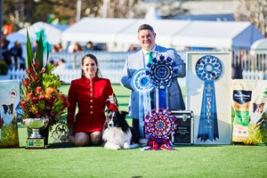 Supreme Champion Border Collie SUP.CH. Pukawidgee Name Of The Wind named Best in Show at All Breeds Champion Show